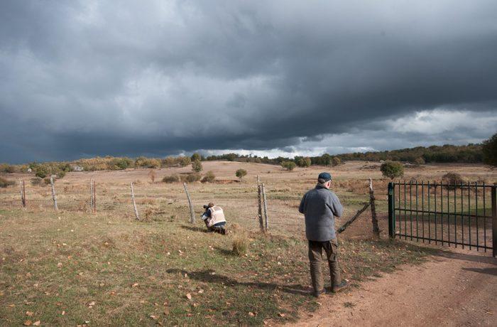 Spannende wolkenlucht boven de prairie.