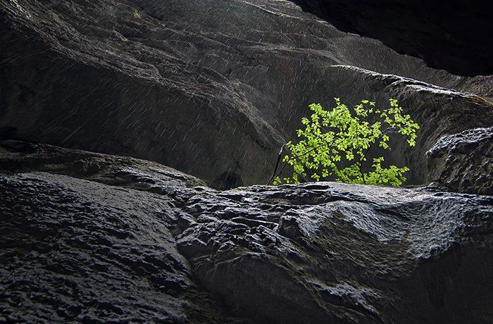 Regen in smalle rotskloof. Zoeken naar de juiste belichting en sluitertijd.