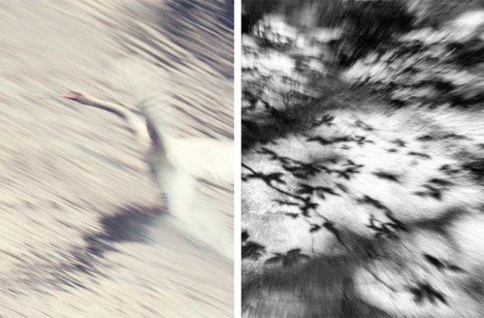 Twee foto's van Marijke Garritsen, deelneemster aan de eerste mentorgroep. 'Onder de noemer Vervlogen, wil ik het voorbijgaan van de tijd vastleggen'.