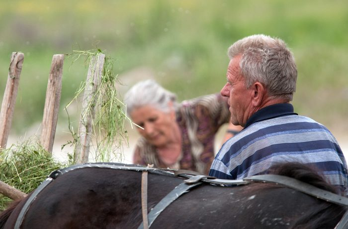 Volop mogelijkheden om tussendoor het ouderwetse plattelandsleven vast te leggen.