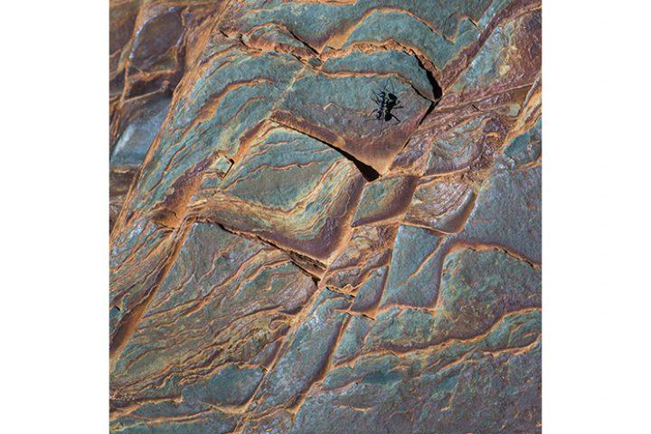 """Zie jij de bewoner van dit """"maanlandschap""""? (Rio Tinto)nto"""