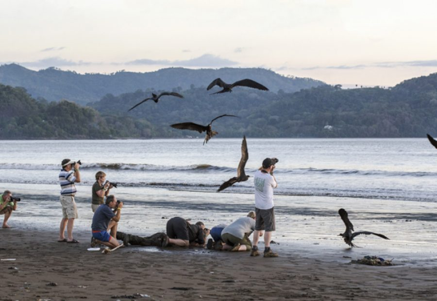 Avondsessie op het strand. Foto: Marie-Elise Reijke.